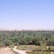 Oasi di Siwa, Egitto