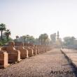 Presso il Tempio di Luxor, Egitto
