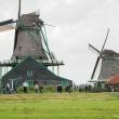 Mulini Zaanse Schans, Olanda