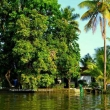Backwaters, Kerala