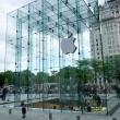 Apple Store, New York city