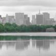 Laghetto presso il Central Park, New York city