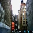 Vicolo, New York City