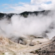 Geyser presso la Valle della luna a Rotorua, Nuova Zelanda