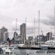 Porto di Auckland, Nuova Zelanda