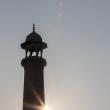 Minareto del Taj Mahal - Agra, India