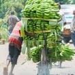 Trasporto di babane, Tanzania