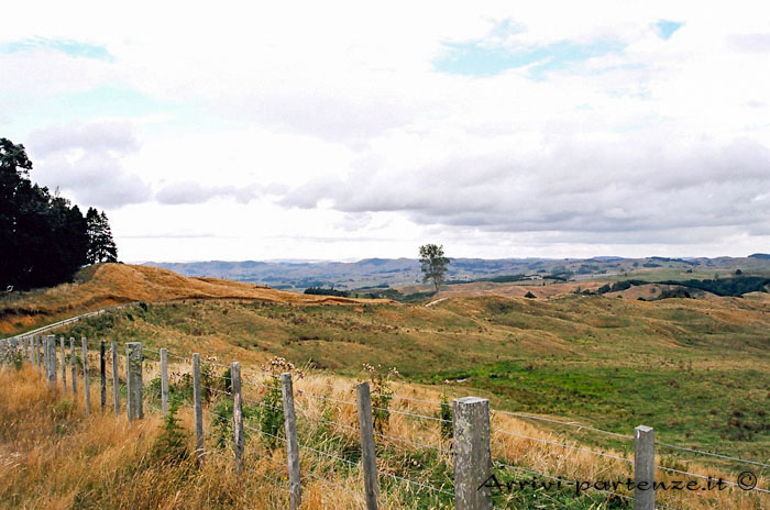 Rotorua, cosa vedere