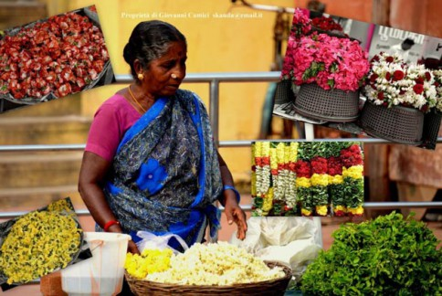 Venditrice di fiori, Kanchipuram