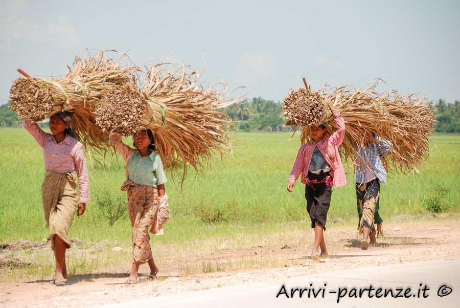 Contadini birmani, con il raccolto, per strada, Birmania