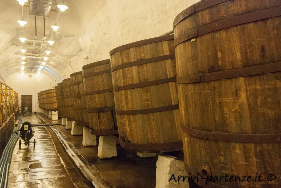 Botti di legno nelle cantine presso la fabbrica della birra a Pilsen, Repubblica Ceca
